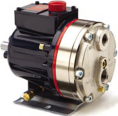 D10 Hydra-Cell Pump with threaded ports