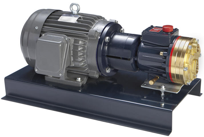 D10 hydra cell pump system