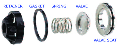Hydra-Cell pump check valve components