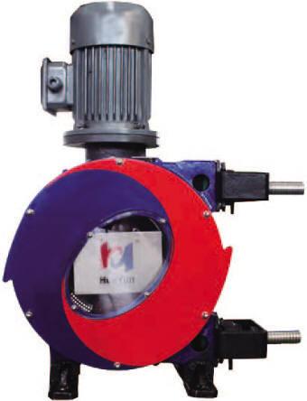 Models IHP20Z - IHP32Z hose pumps
